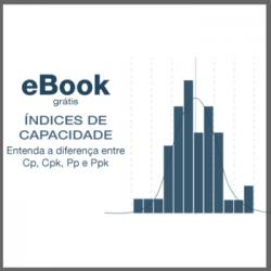ebook indides